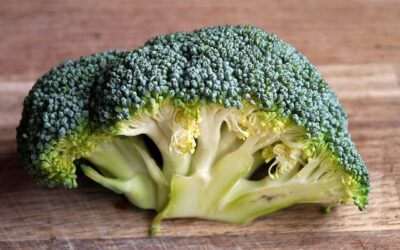 What's the story about Sulforaphane