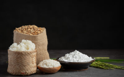 Do we need carbohydrates?